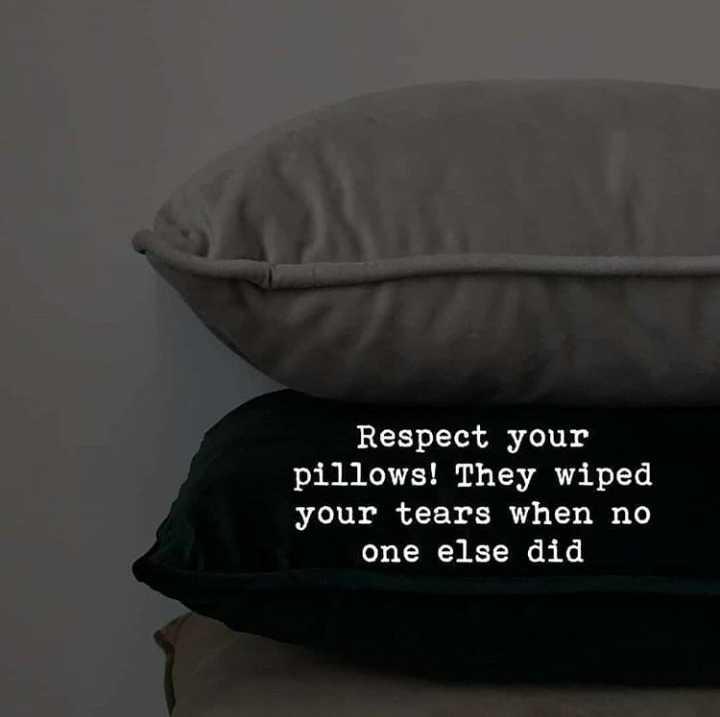 💑 സ്നേഹം - Respect your pillows ! They wiped your tears when no one else did - ShareChat