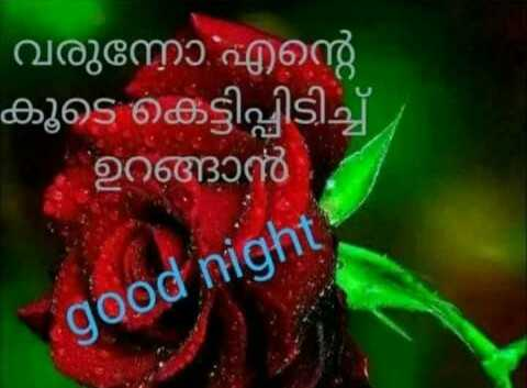 💑 സ്നേഹം - ' വരുന്നോ എന്റെ കൂടെ കെട്ടിപ്പിടിച്ച് ഉറങ്ങാൻ good night - ShareChat