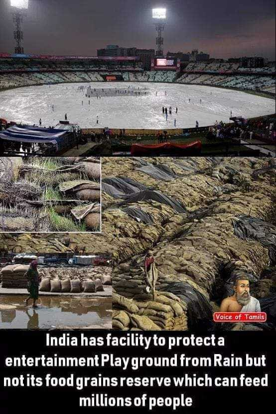 👨👧पापा की परी - Voice of Tamils India has facility to protect a entertainment Playground from Rain but notits food grains reserve which can feed millions of people - ShareChat