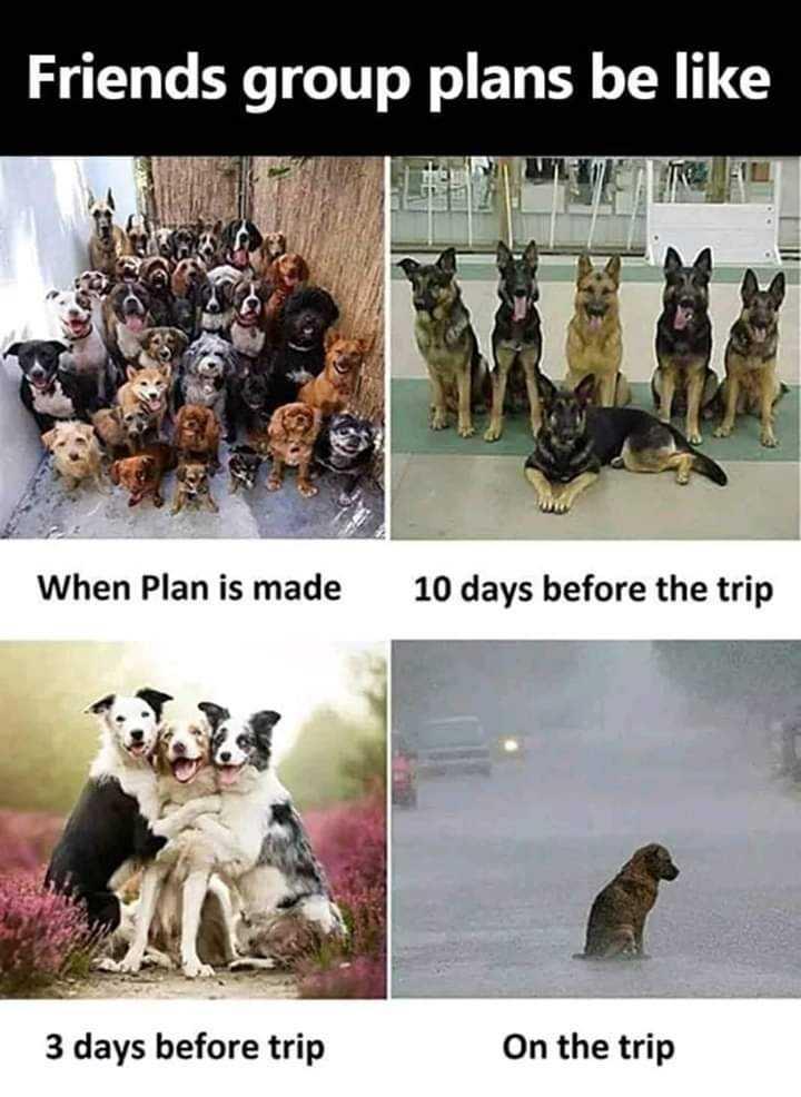 👨🏫 என் கல்லூரி வாழ்க்கை - Friends group plans be like When Plan is made 10 days before the trip 3 days before trip On the trip - ShareChat
