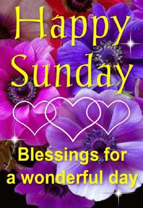 🧚♀ பேரழகி - Colors Tamil - LW Happy . Sunday Blessings for a wonderful day - ShareChat