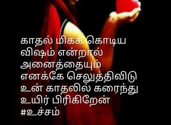 🧚♀ பேரழகி - Colors Tamil - ' காதல் மிகக் கொடிய விஷம் என்றால் அனைத்தையும் ' எனக்கே செலுத்திவிடு உன் காதலில் கரைந்து உயிர் பிரிகிறேன் # உச்சம் - ShareChat