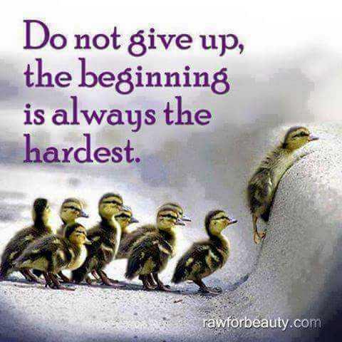 👩🏫కెరీర్ గైడెన్స్ - Do not give up , the beginning is always the hardest . rawforbeauty . com - ShareChat
