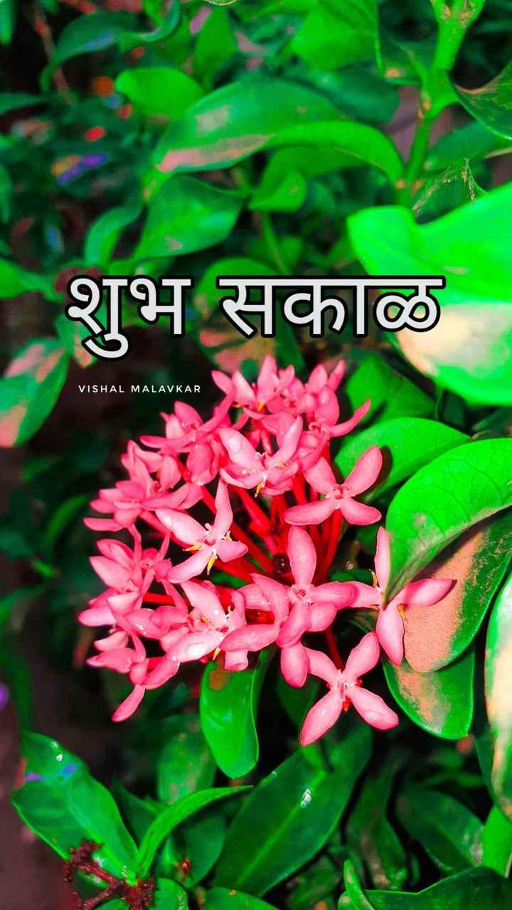 👨👩👧👦जागतिक लोकसंख्या दिन - | शुभ सकाळ VISHAL MALAVKAR - ShareChat
