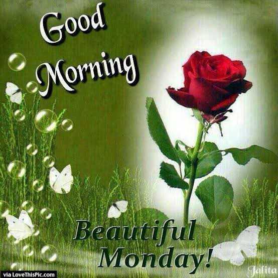 🏃♂️ फास्ट फॉरवर्ड🏃♀️ - Good Morning Beautiful Monday ! Calita via LoveThisPic . com - ShareChat