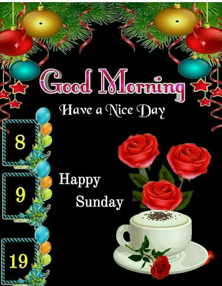 🏃♂️ फास्ट फॉरवर्ड🏃♀️ - ce Good Morning Have a Nice Day Happy Sunday 19 Sunday - ShareChat