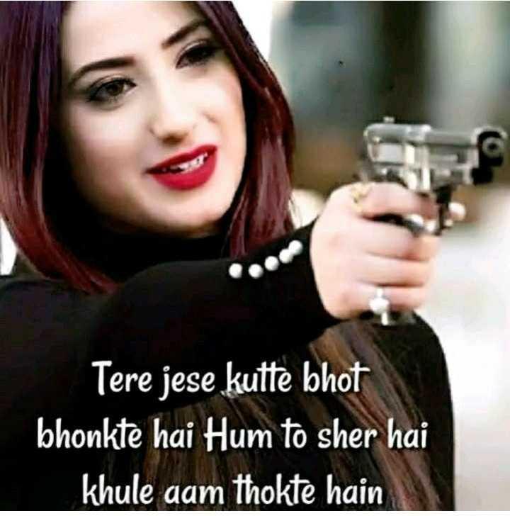 💁♂️मेरा स्टेटस - Tere jese kutte bhot bhonkte hai Hum to sher hai khule aam thokte hain - ShareChat