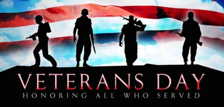 🙋‍♂️ सेल्यूट डे - VETERANS DAY HONORING ALL WHO SERVED - ShareChat