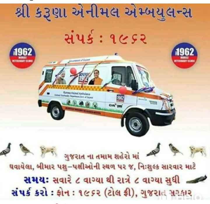 🙋♂️ હું છું શેરચેટ કેપ્ટન - શ્રી કરૂણા એનીમલ એમ્બયુલન્સ | સંપર્ક : ૧૯ ૬ર 192 1 / 2 ને ! WTERINART LIMARTIN જન ગુજરાત ના તમામ શહેરો માં ઘવાયેલા , બીમાર પશુ - પક્ષીઓની સ્થળ પર જ , નિઃશુલ્ક સારવાર માટે સમયઃ સવારે ૮ વાગ્યા થી રાત્રે ૮ વાગ્યા સુધી સંપર્ક કરો : ફોન : ૧૯૬૨ ( ટોલ ફ્રી ) , ગુજરાતું સરકાર - ShareChat