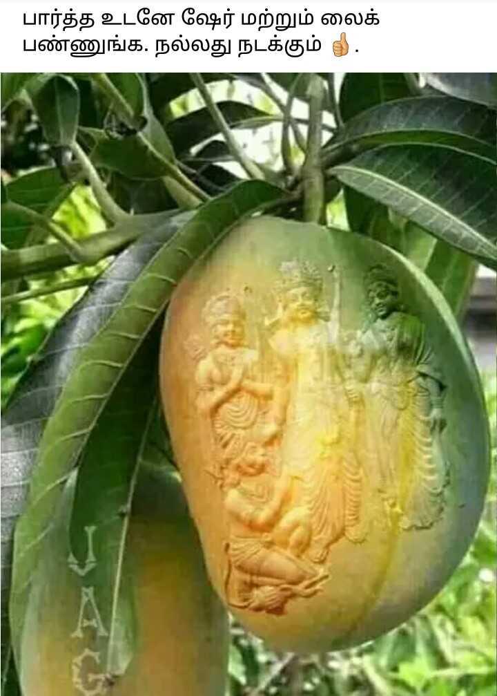 🤸♀️ கலை - பார்த்த உடனே ஷேர் மற்றும் லைக் பண்ணுங்க . நல்லது நடக்கும் 5 . - ShareChat