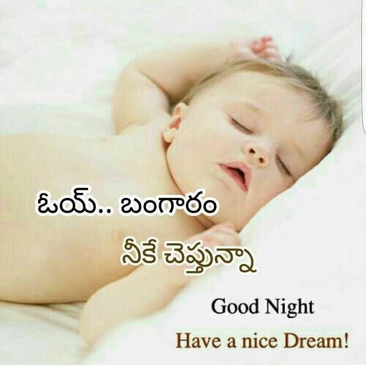 👯♀️ స్నేహితుల అడ్డా - ఓయ్ . . బంగారం నీకే చెప్తున్నా Good Night Have a nice Dream ! - ShareChat