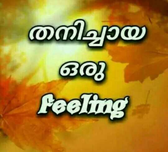 🤹♂️ ഞാൻ - നിച്ചായ ഒരു feeling - ShareChat