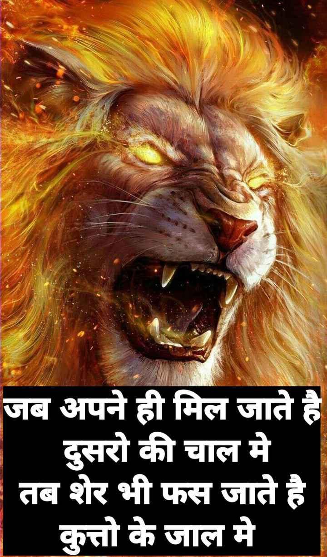 🤼♂️WWE - NEW N CANNA जब अपने ही मिल जाते है दुसरो की चाल मे तब शेर भी फस जाते है कुत्तो के जाल मे - ShareChat