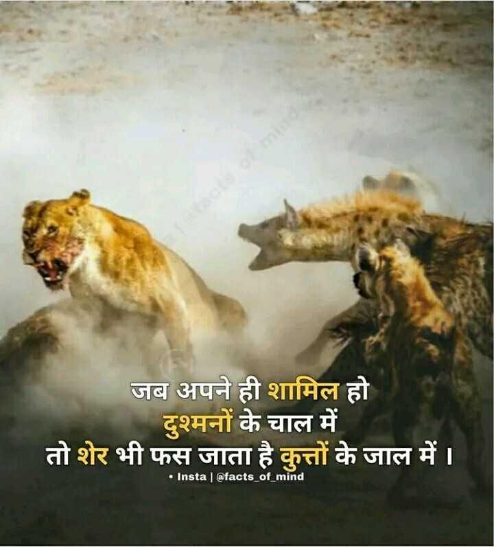 🤼♂️ WWE - जब अपने ही शामिल हो दुश्मनों के चाल में तो शेर भी फस जाता है कुत्तों के जाल में । • Insta | @ facts _ of _ mind - ShareChat