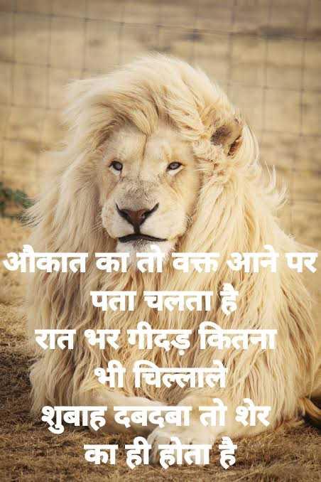 🤼♂️WWE - औकात का तो वक्त आने पर पता चलता है रात भर गीदड़ कितना भी चिल्लाले शुबाह दबदबा तो शेर का ही होता है - ShareChat