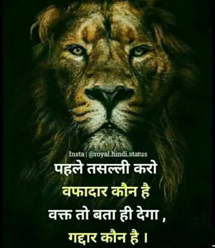 🤼♂️ WWE - Insta @ royal . hindi . status पहले तसल्ली करो वफादार कौन है वक्त तो बता ही देगा , गद्दार कौन है । - ShareChat