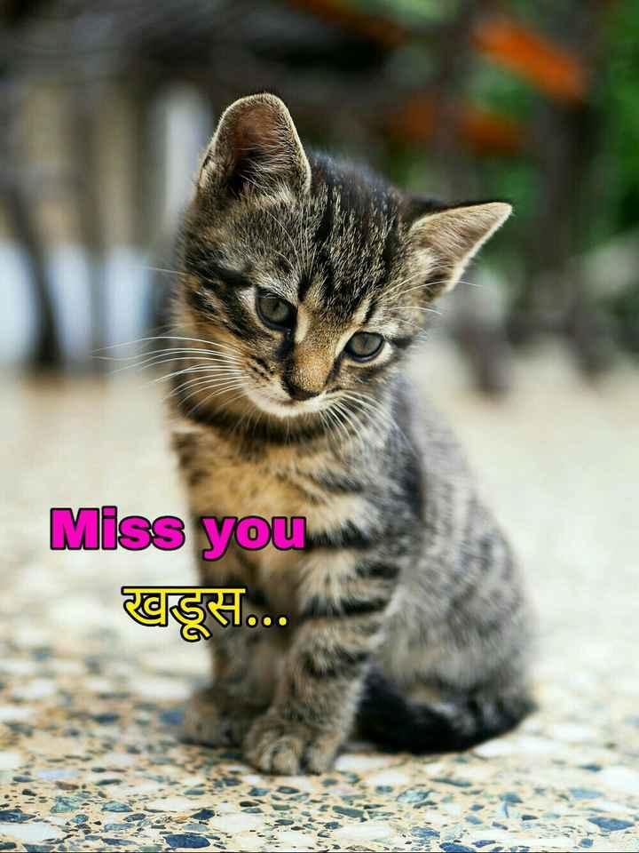 👩🏻🎤Girls नौटंकी - Miss you खुडूस . . . - ShareChat