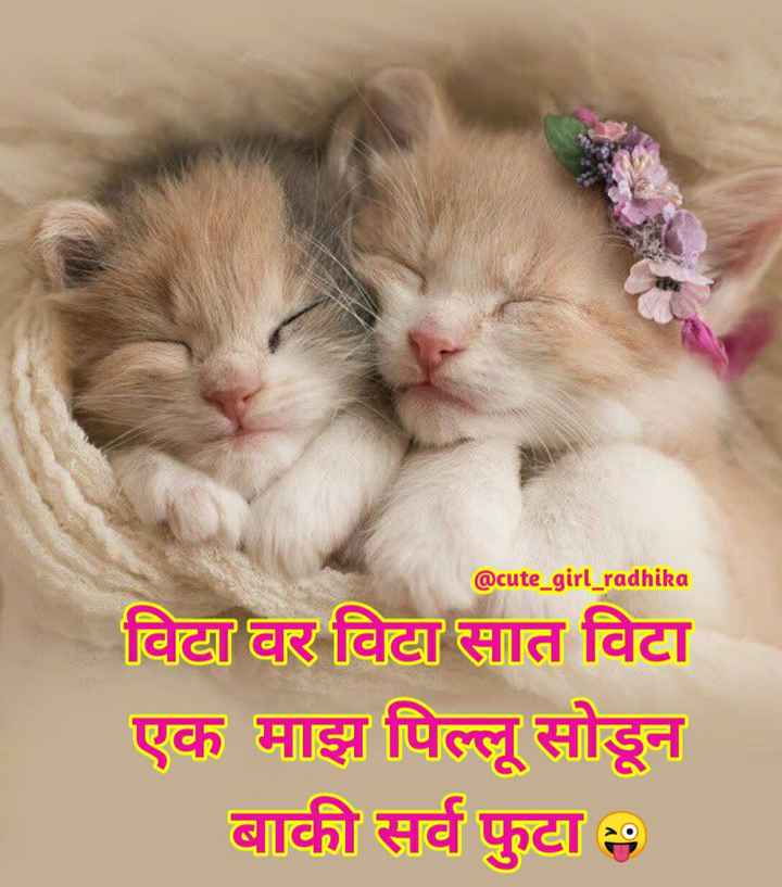 👩🏻🎤Girls नौटंकी - @ cute _ girl _ radhika दिवटा घर विदात विटा एक माझ पिल्लू सोडून । बाकी सर्व फुटा । > ( ० - ShareChat