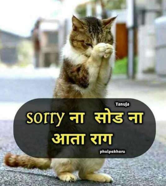 👩🏻🎤Girls नौटंकी - Tanuja Sorry ना सोड ना आता राग phulpakharu - ShareChat
