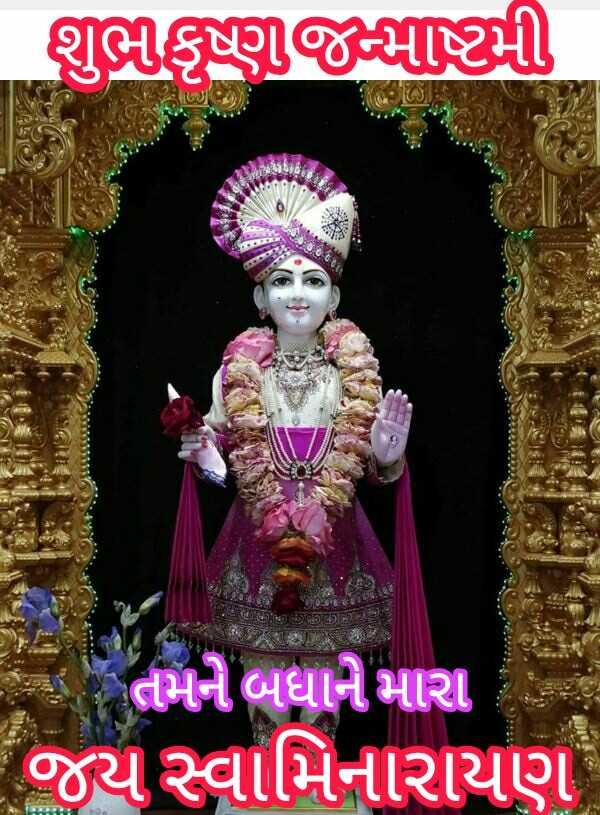 ✋ જય સ્વામીનારાયણ - શુભીકૃષ્ણજન્માષ્ટમી તમને બધાને મારા જય સ્વામિનારાયણ - ShareChat