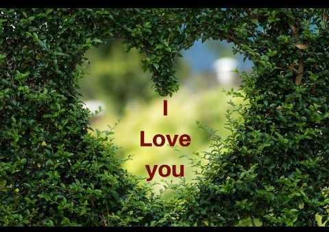 ✍ મારી કવિતાના વિડિઓ - Love you - ShareChat