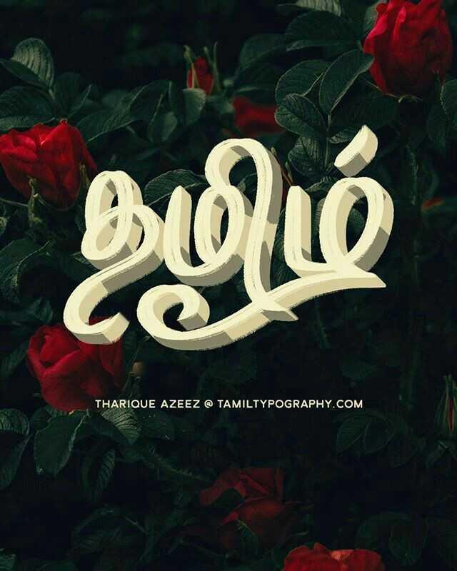 ✍ எழுத்துக்கலை - - இழிம் THARIQUE AZEEZ @ TAMILTYPOGRAPHY . COM - ShareChat