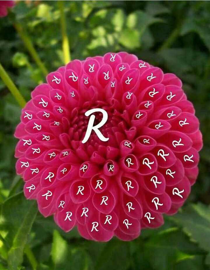 ✍ டிஜிட்டல் கலை - P R x R RRR RRN R PPR RRR R PRP P R RR RR RRRRRR RRR - ShareChat