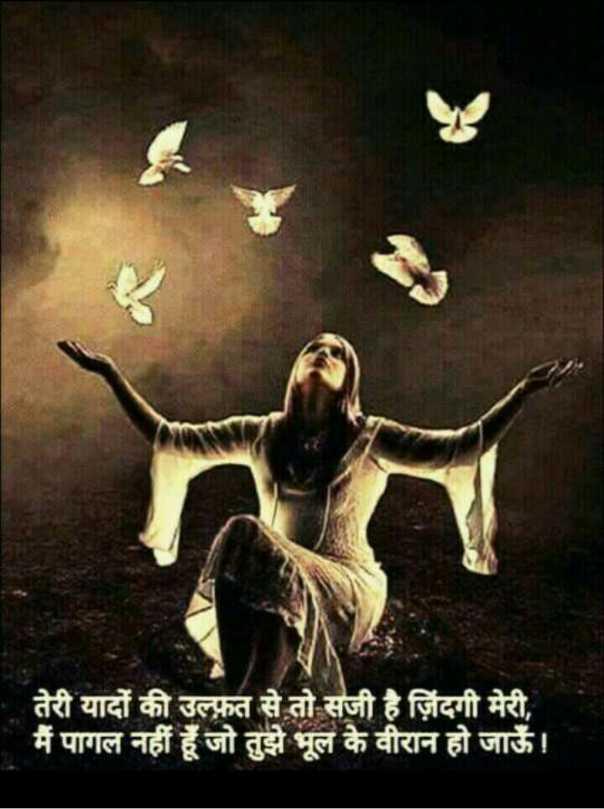 ✍️अल्फ़ाज़✍️ - तेरी यादों की उल्फ़त से तो सजी है जिंदगी मेरी , मैं पागल नहीं हूँ जो तुझे भूल के वीरान हो जाऊँ । - ShareChat
