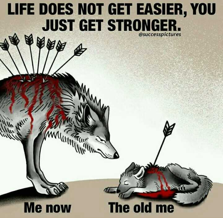 ✍️కోట్స్ - LIFE DOES NOT GET EASIER , YOU JUST GET STRONGER . @ successpictures M11 VM Me now The old me - ShareChat