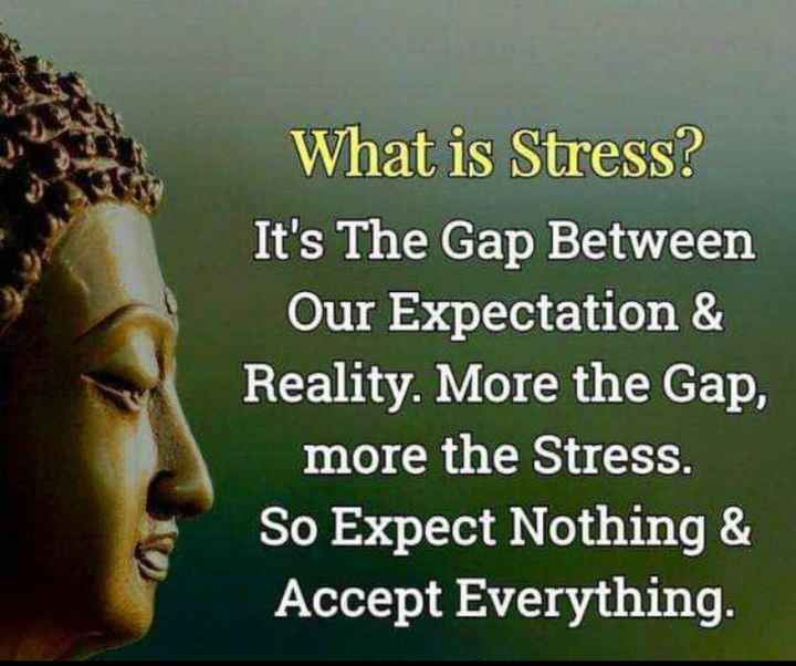 ✍️కోట్స్ - What is Stress ? It ' s The Gap Between Our Expectation & Reality . More the Gap , more the Stress . So Expect Nothing & Accept Everything . - ShareChat