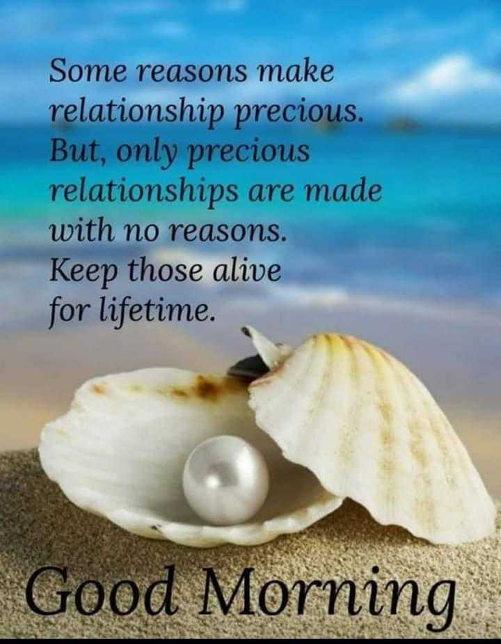 ✍️కోట్స్ - Some reasons make relationship precious . But , only precious relationships are made with no reasons . Keep those alive for lifetime . Good Morning - ShareChat