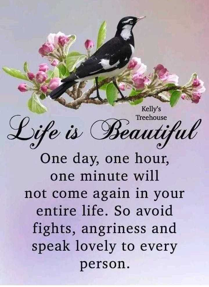 ✍️కోట్స్ - Kelly ' s Treehouse Life is Beautiful One day , one hour , one minute will not come again in your entire life . So avoid fights , angriness and speak lovely to every person . - ShareChat