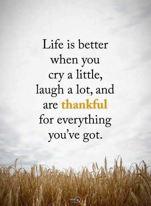 ✍️కోట్స్ - Life is better when you cry a little , laugh a lot , and are thankful for everything you ' ve got . - ShareChat