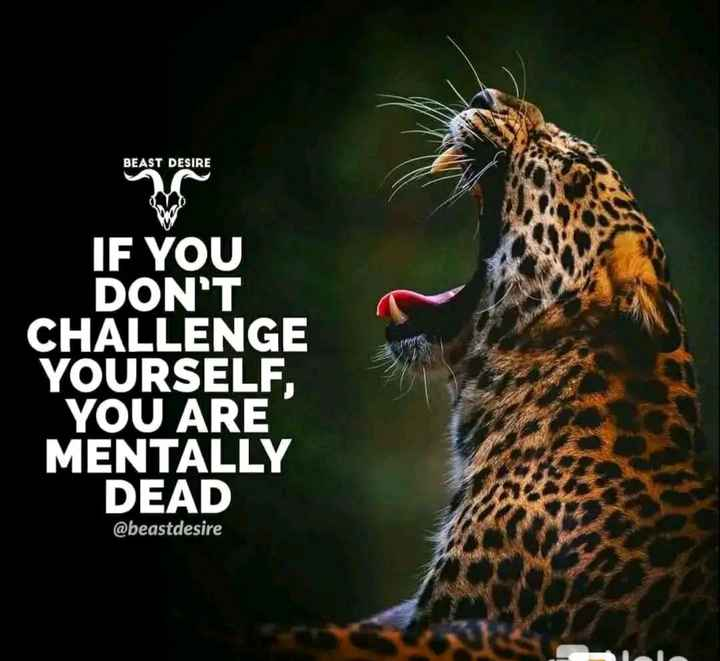 ✍️  Motivatinal Quotes - BEAST DESIRE IF YOU DON ' T CHALLENGE YOURSELF , YOU ARE MENTALLY DEAD @ beastdesire - ShareChat