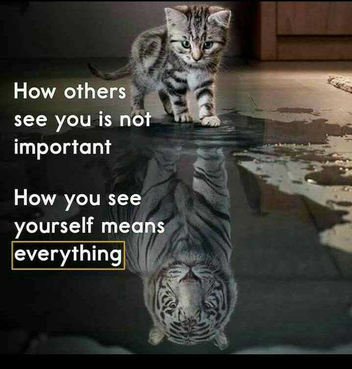 ✍️  Motivatinal Quotes - How others see you is not important How you see yourself means everything - ShareChat