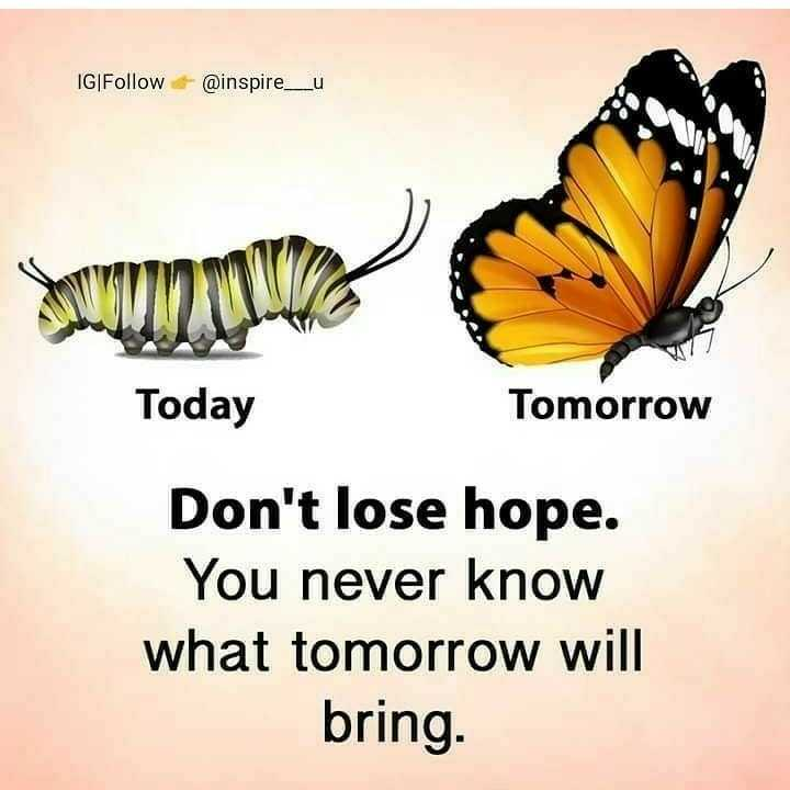 ✍️ Motivatinal Quotes - IG | Follow @ inspire _ u www2017 Today Tomorrow Don ' t lose hope . You never know what tomorrow will bring . - ShareChat