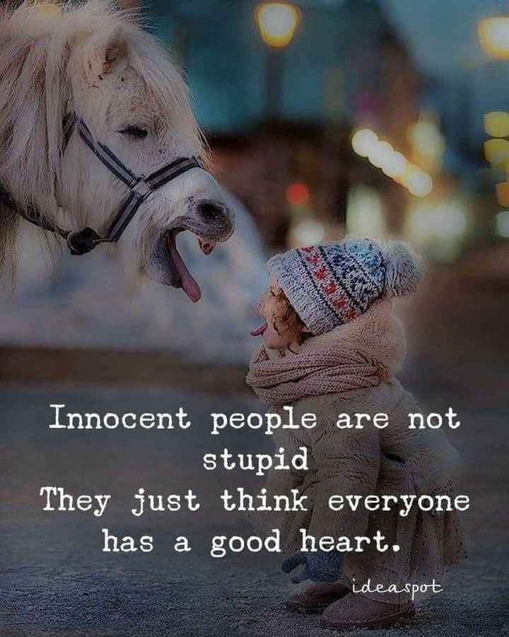 ✍life changing quotes - Innocent people are not stupid They just think everyone has a good heart . ideaspot - ShareChat