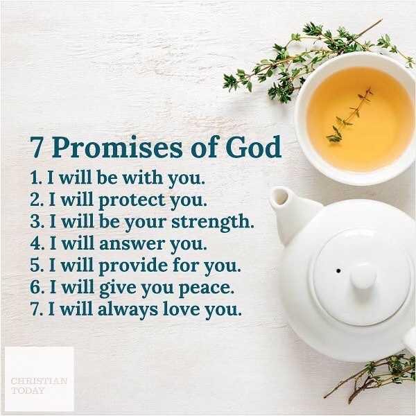 ✝జీసస్ - 7 Promises of God 1 . I will be with you . 2 . I will protect you . 3 . I will be your strength . 4 . I will answer you . 5 . I will provide for you . 6 . I will give you peace . 7 . I will always love you . CHRISTIAN TODAY - ShareChat