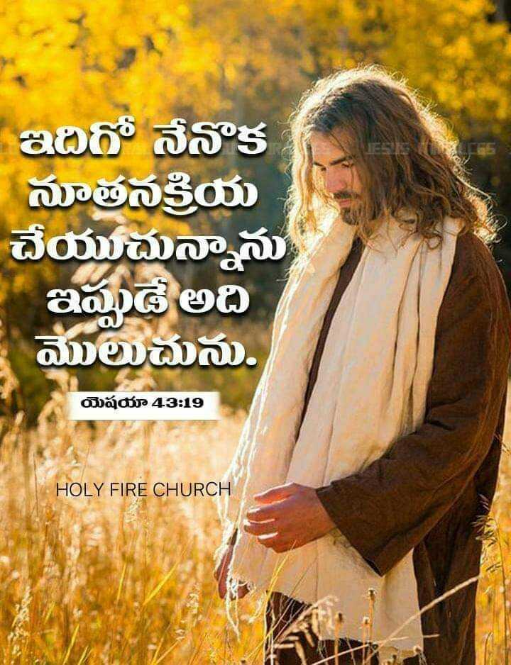 ✝జీసస్ - ఇదిగో నేనొక నూతనక్రియ చేయుచున్నాను ఇప్పుడే అది మొలుచును . యెషయా 43 : 19 HOLY FIRE CHURCH - ShareChat