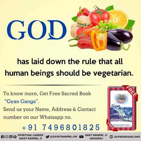 ✝️ प्रेयर ✝️ - GOD has laid down the rule that all human beings should be vegetarian . FREE Gyan To know more , Get Free Sacred Book Gyan Ganga . Send us your Name , Address & Contact number on our Whatsapp no . + 91 74968018 25 Ganga non SPIRITUAL LEADER Y SAINT RAMPAL JI SAINTRAMPALJIM SANT RAMPAL MAHARAJ SUPREMEGOD . ORG SUPREM - ShareChat