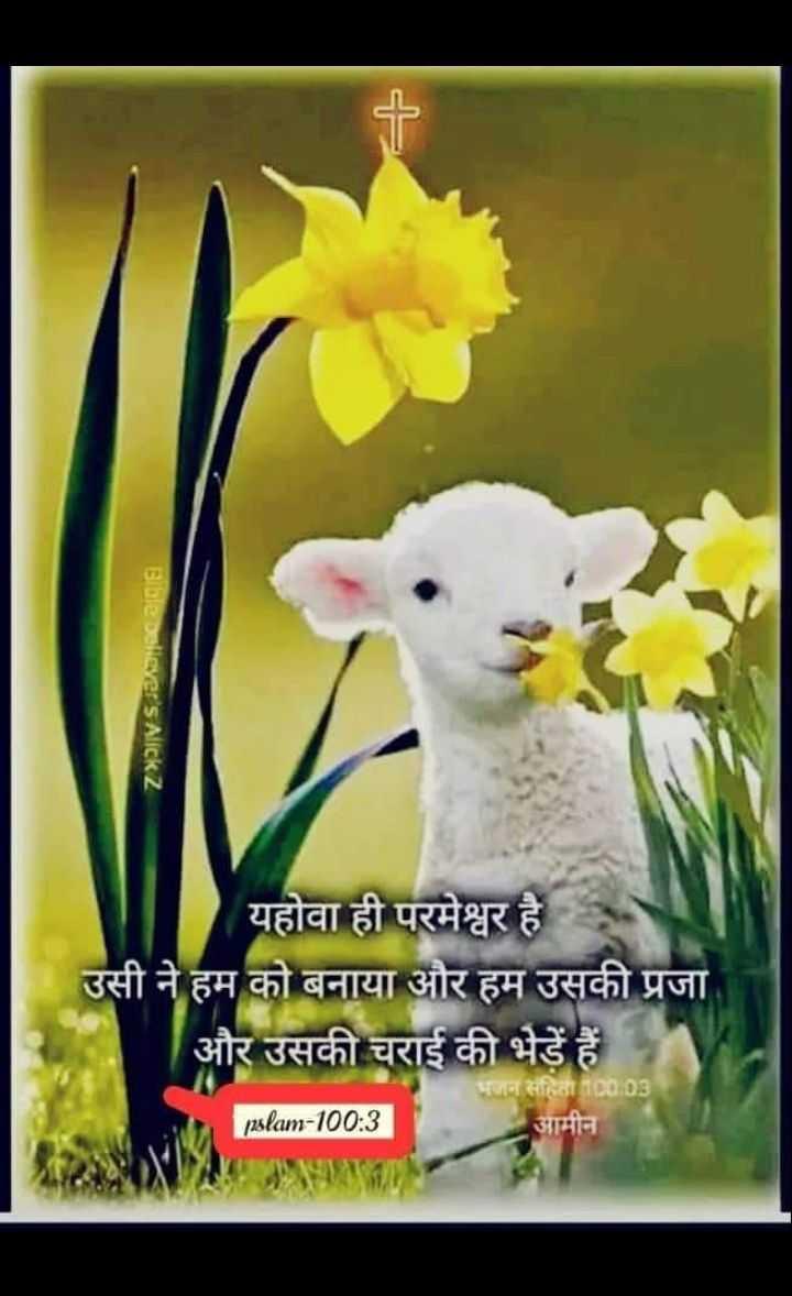 ✝️ प्रेयर ✝️ - Bible believer ' s Alickz यहोवा ही परमेश्वर है उसी ने हम को बनाया और हम उसकी प्रजा और उसकी चराई की भेड़ें हैं nslam - 100 : 3 भजन संहिता 10003 आमीन - ShareChat