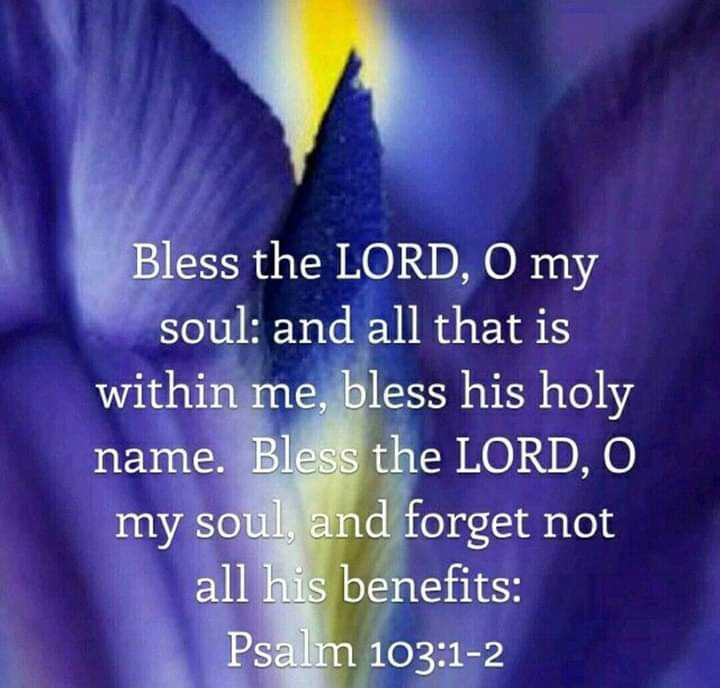 ✝️येशू प्रेयर - Bless the LORD , O my soul : and all that is within me , bless his holy name . Bless the LORD , O my soul , and forget not all his benefits : Psalm 103 : 1 - 2 - ShareChat