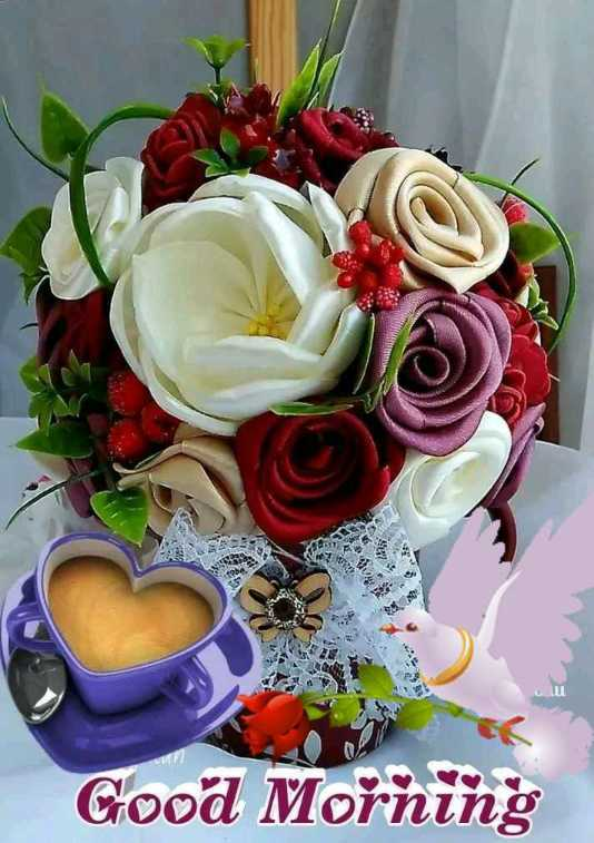 ✨बुधवार - Good Morning - ShareChat