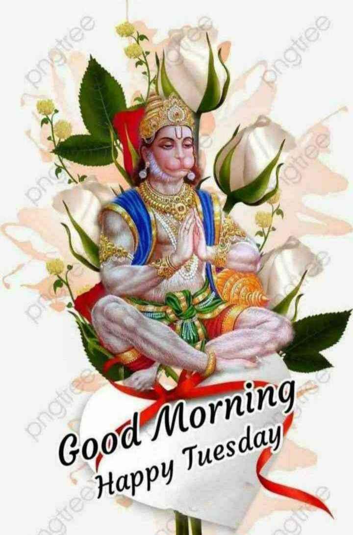 ✨मंगळवार - pngtree zenbud pngtre Good Morning Happy Tuesday - ShareChat