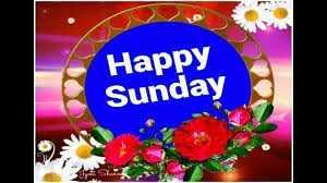 ✨रविवार - Happy Sunday - ShareChat