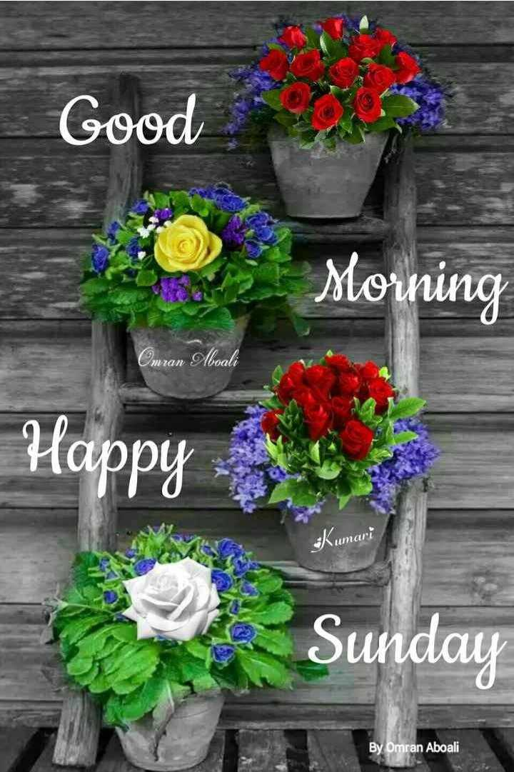 ✨रविवार - Good a Morning Omran Aboali Happy : Kumari Sunday By Omran Aboali - ShareChat