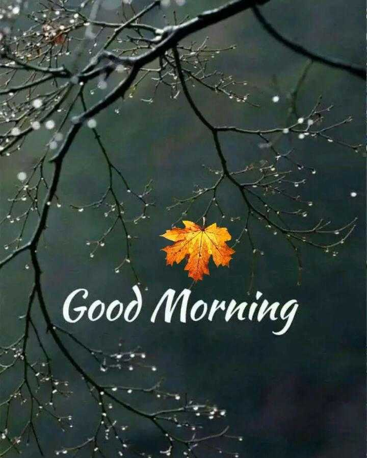 ✨रविवार - Good Morning - ShareChat