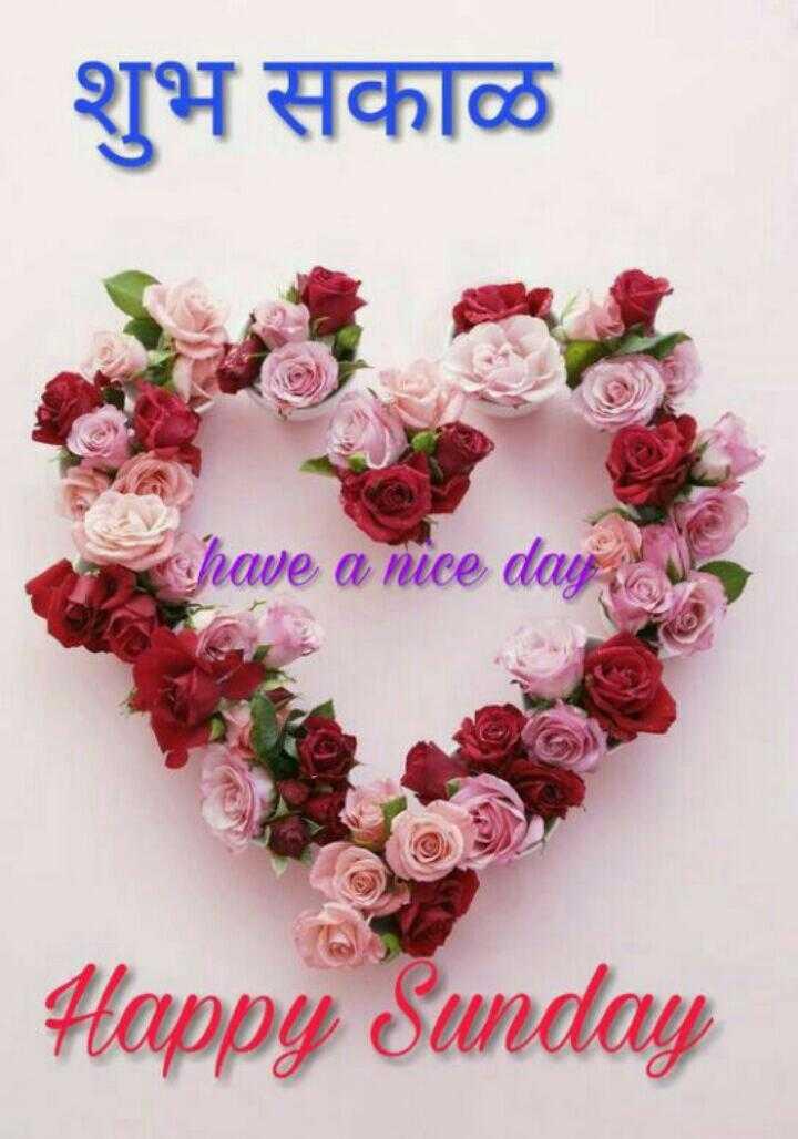 ✨रविवार - शुभ सकाळ have a ni Happy Sunday - ShareChat