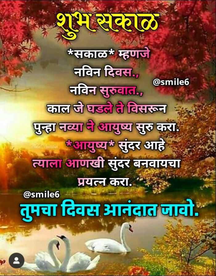 ✨विचारांचा बुधवार - शुभ सकाळ @ smile6 * सकाळ * म्हणजे नविन दिवस . , नविन सुरुवात . , काल जे घडले ते विसरून पुन्हा नव्याने आयुष्य सुरु करा . आयुष्य सुंदर आहे त्याला आणखी सुंदर बनवायचा प्रयत्न करा . तुमचा दिवस आनंदात जावो . @ smile6 - ShareChat