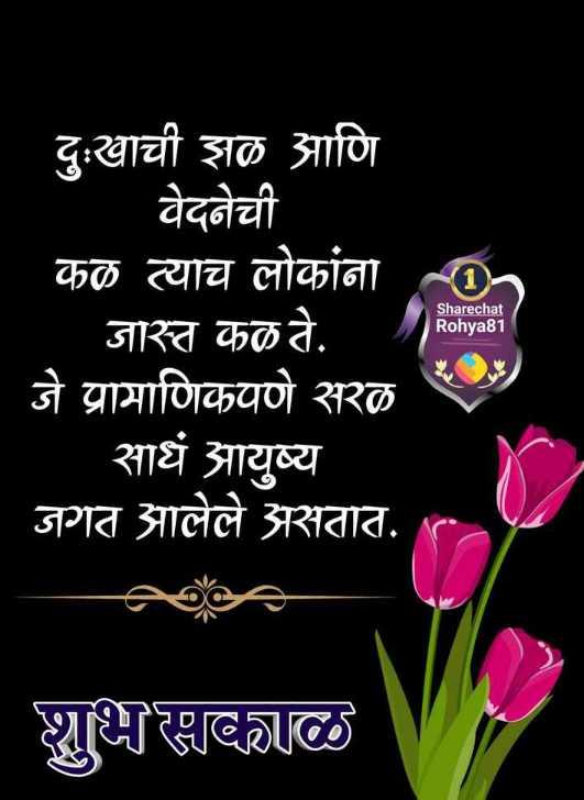 ✨शुभ मंगळवार - दुःखाची झळ आणि वेदनेची कळ त्याच लोकांना _ _ _ जास्त कळ ते . जे प्रामाणिकपणे सरळ साधं आयुष्य जगत आलेले असतात . Sharechat Rohya81 शुभ सकाळ - ShareChat